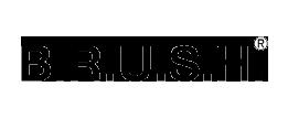 Home- BRUSH logo